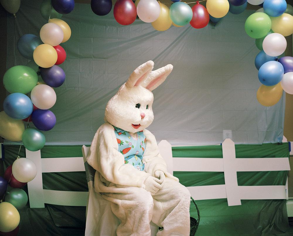 Bunny ,  Maureen Drennan