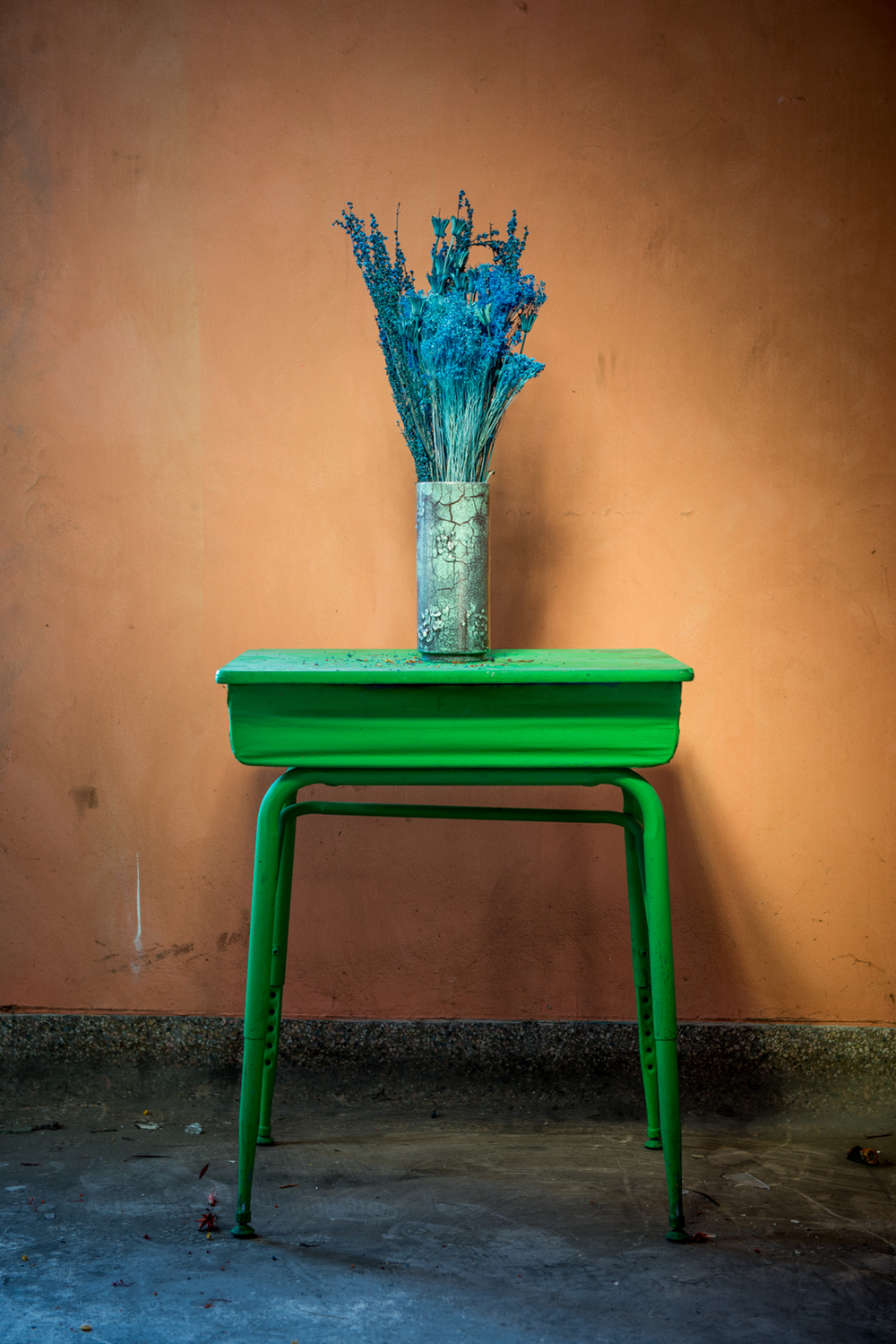 Floral Study: Decay #4 ,  Dan Shepherd