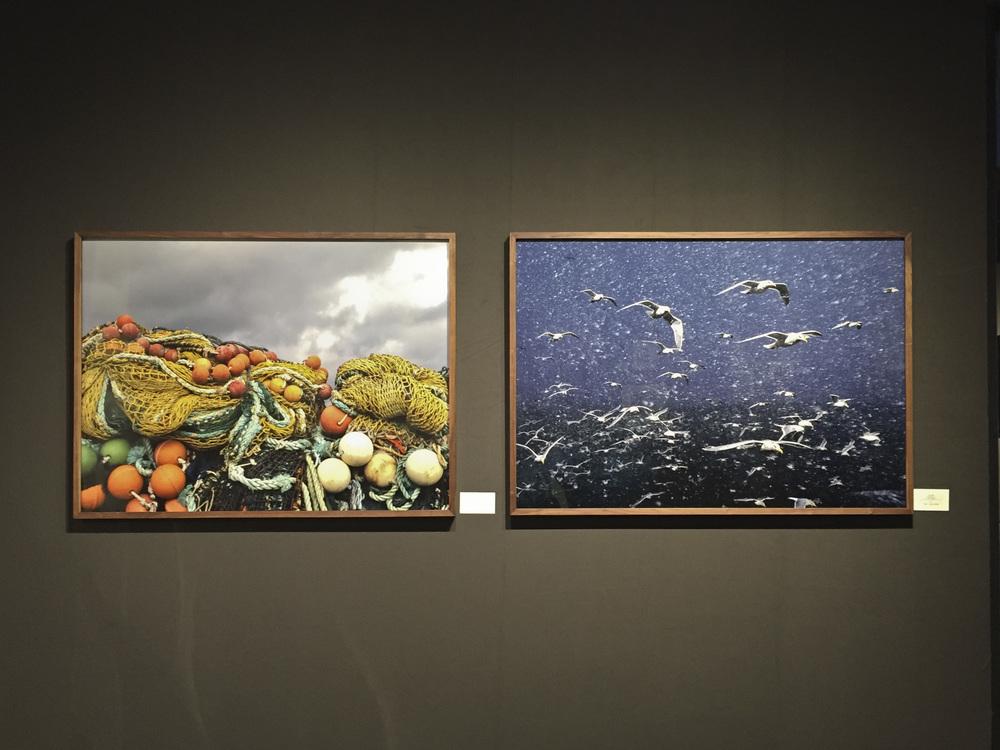 Corey Arnold at Charles A. Hartman Fine Art