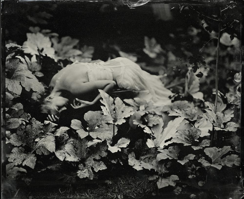 Shelby in Gourd Plant, 2011 ,  Kristen Hatgi-Sink