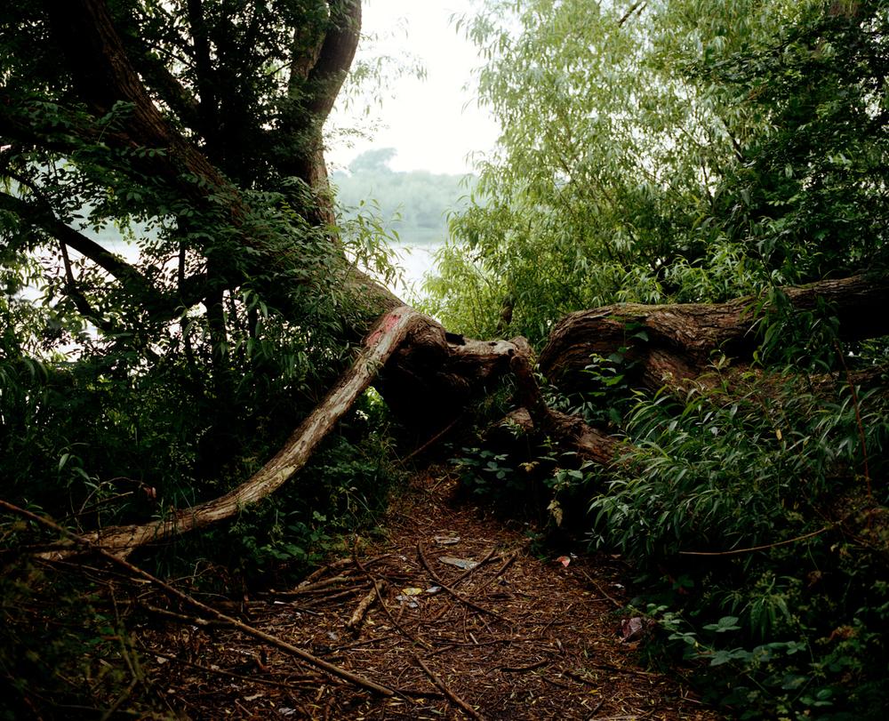 Logs ,  Erik Lovold
