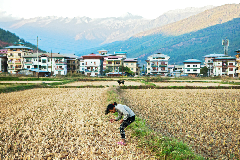Ugyen in a Rice Field, Paro, Bhutan ,  Mary Kang