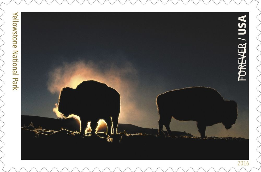 Forever stamp featuring a photograph by Art Wolfe