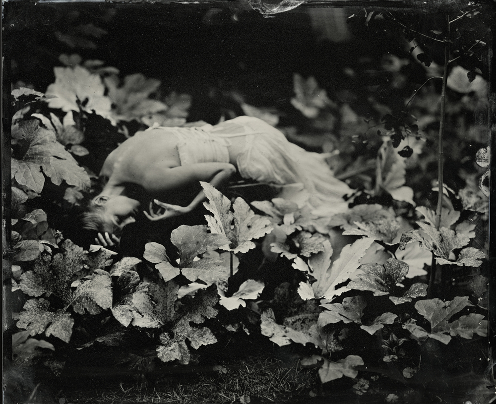 Shelby in Gourd Plant, 2011   Kristen Hatgi-Sink  Archival pigment print from tintype original 6 x 9, signed and numbered edition of 5