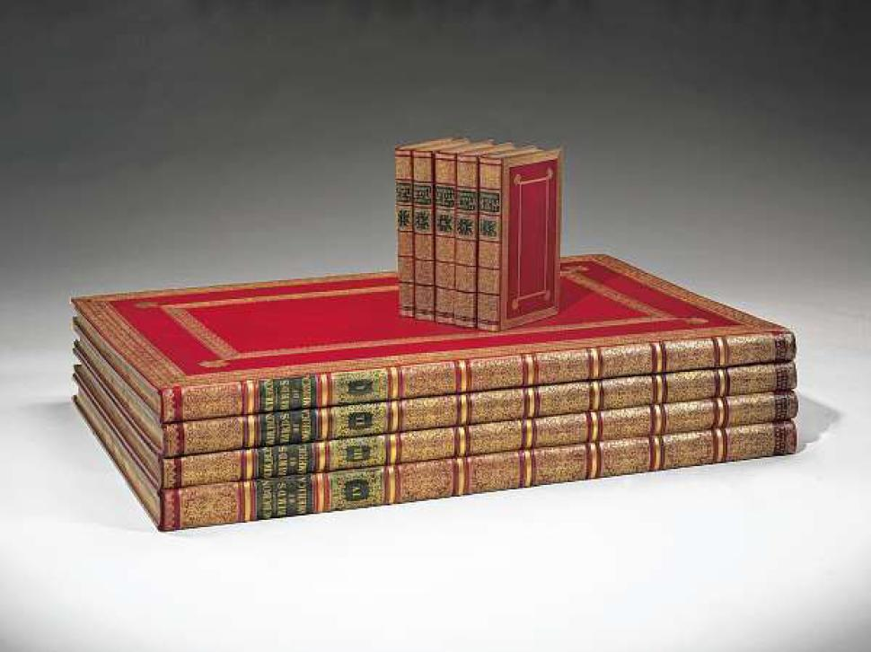 Volumes of  The Birds of America