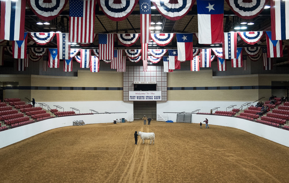 Welcome to the Fort Worth Stock Show, Daniel Gonçalves @fotobia