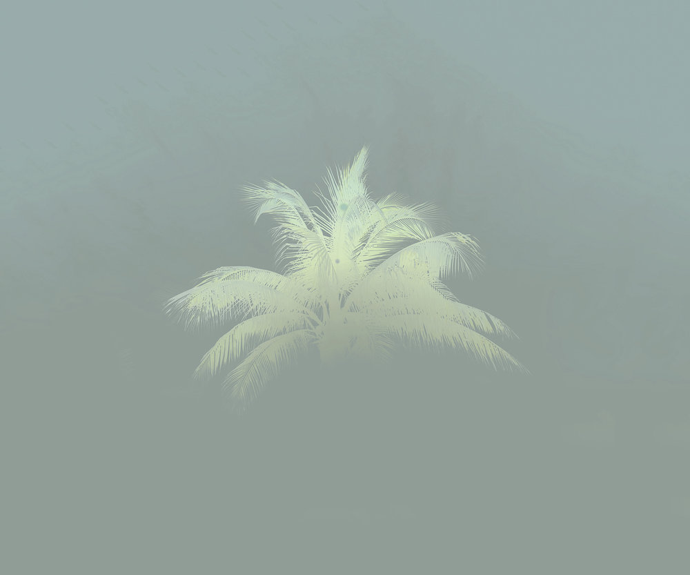 Floating Palm, 2016 ,  Alice Hargrave