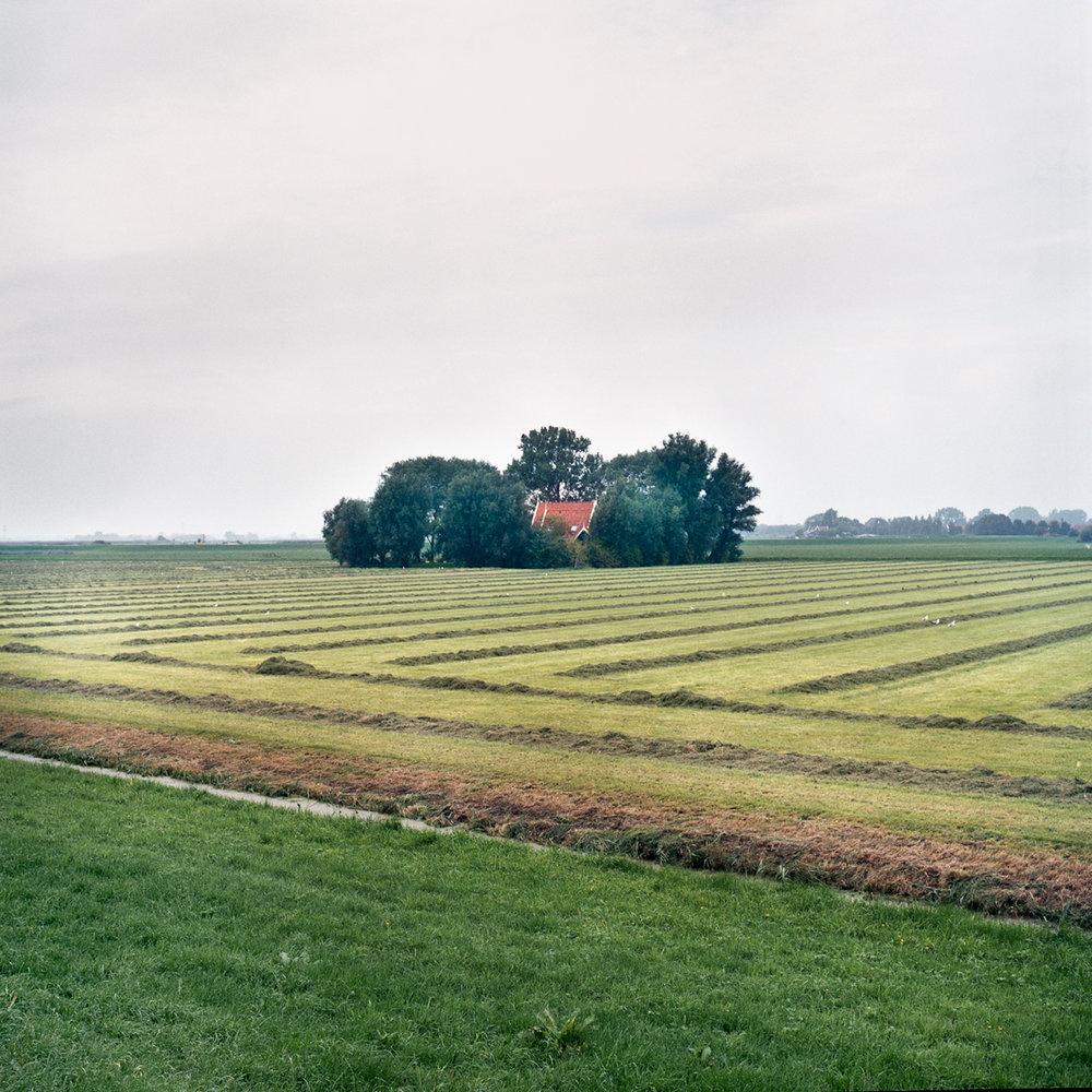 Farmhouse in Field, Noordeinde ,  Loek Buter