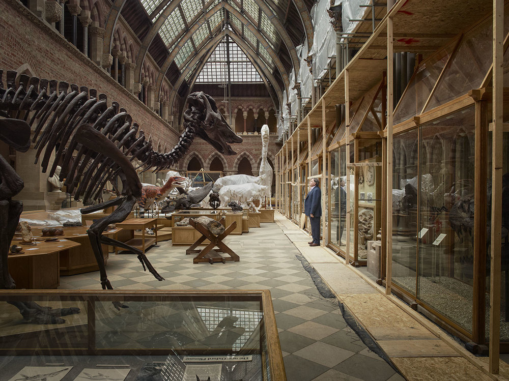 Joanna Vestey   Professor Paul Smith, Director, Oxford University Museum of Natural History  Archival pigment print 6 x 9, signed and numbered edition of 5 $150