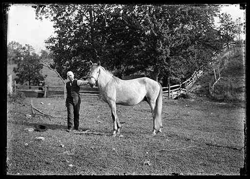 Theodore Clemens Wohlbrück, Unidentified Man with Horse, Worcester County. Glass negative. Ca. 1910. Gift of Russell Bath, 2014.