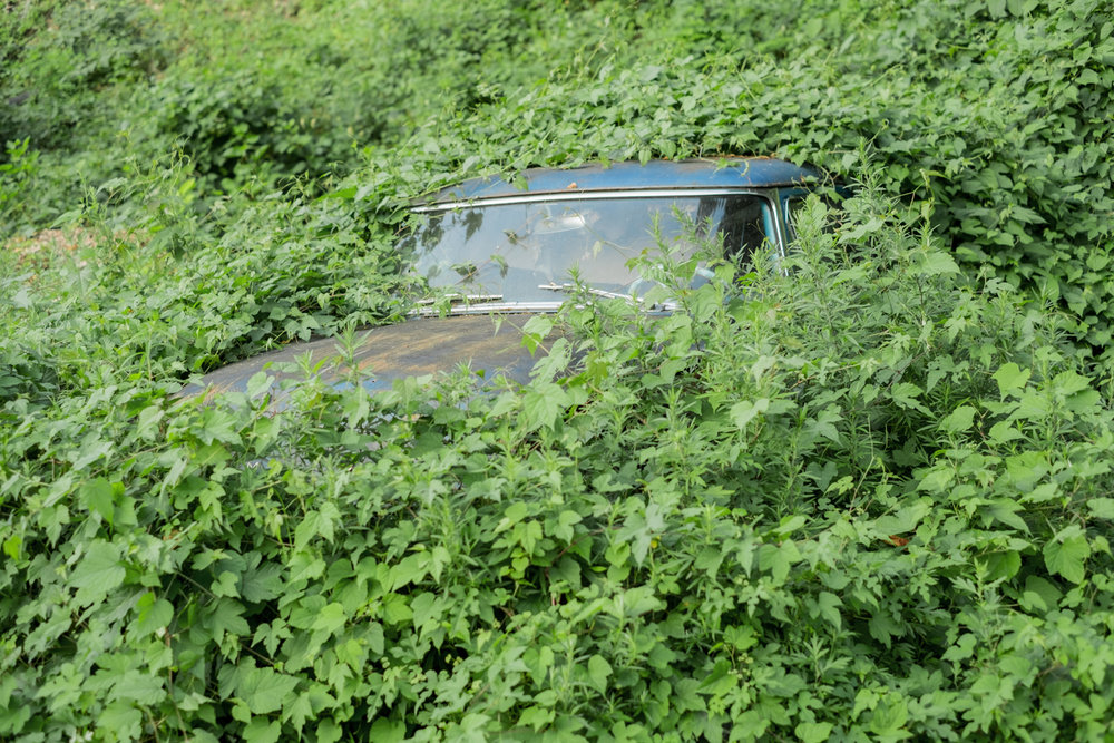 Croton Car ,  Jeffrey Dietz