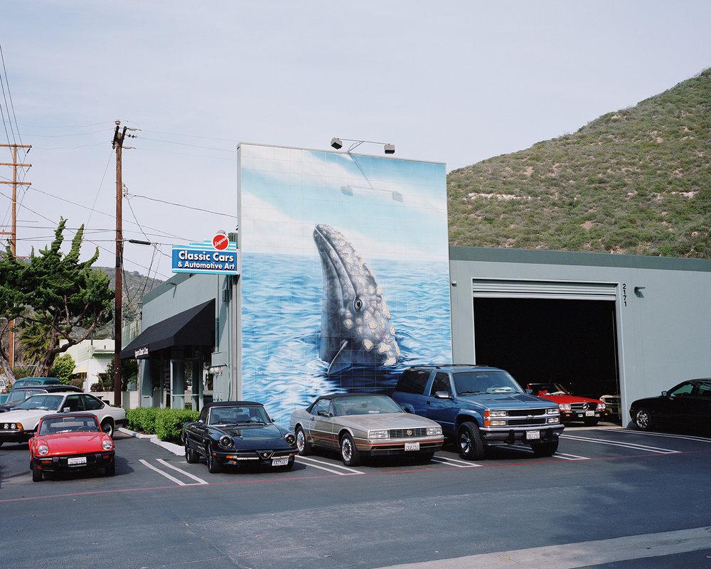 Laguna Beach, CA, Matthew Moore