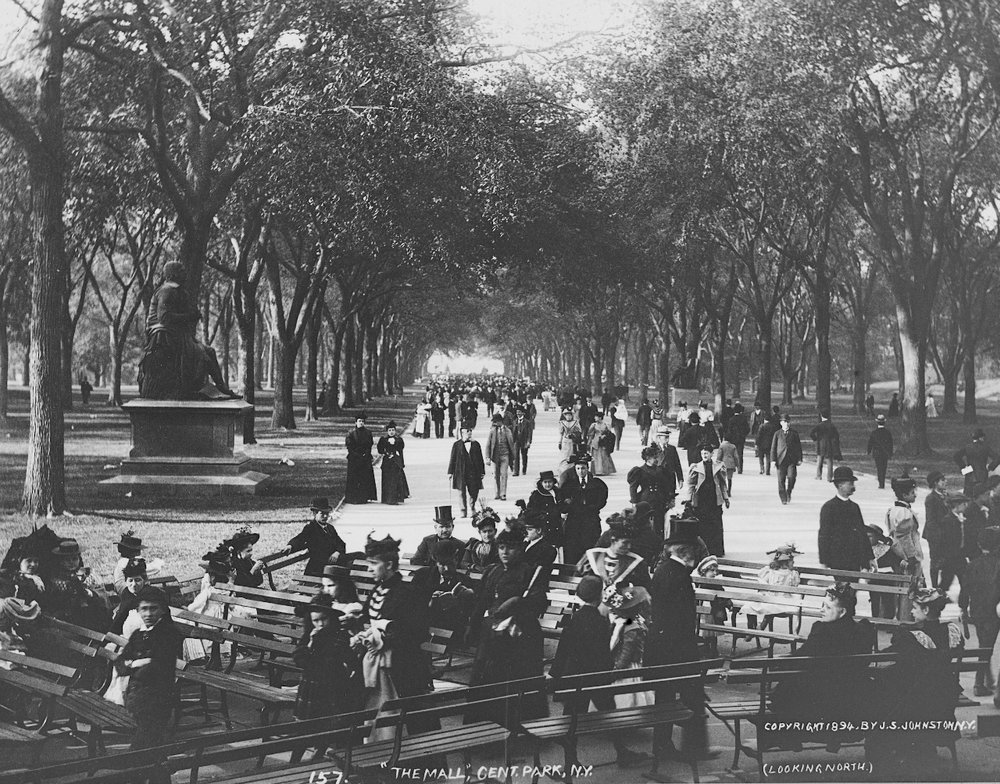 "S. J. Johnston, ""The Mall"" in Central Park (1894) (via  Thomas Warren Sears photograph collection, Archives of American Gardens )"