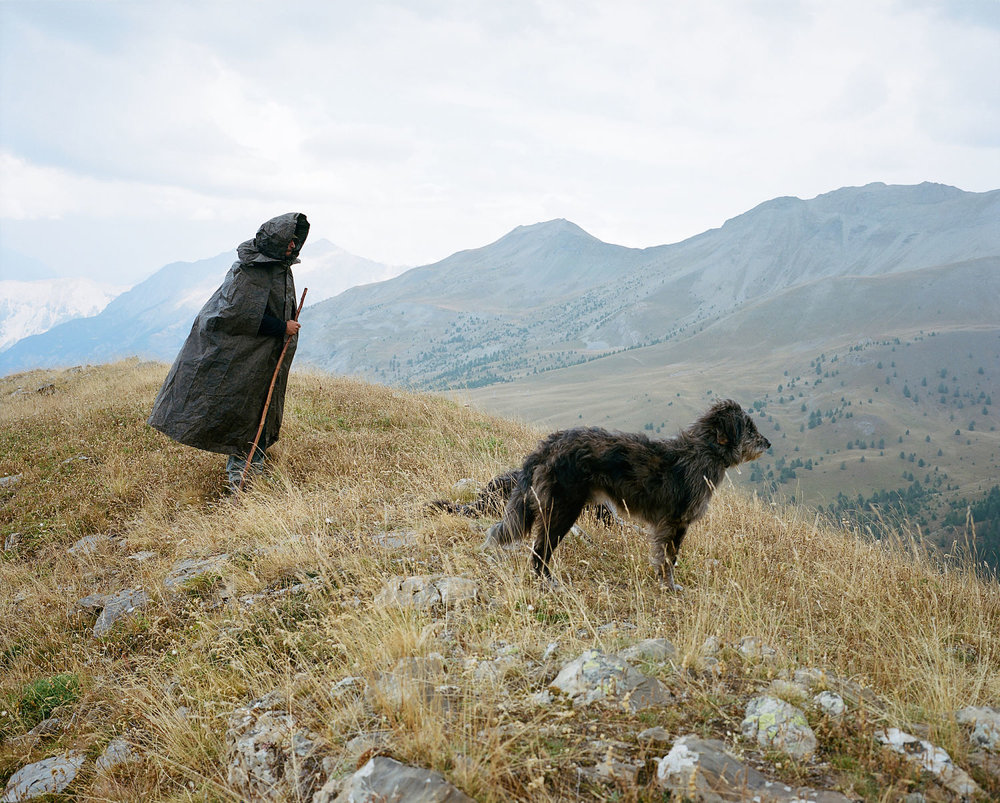 Jérémy and his dogs keep watch over the herd from the series Between Dog & Wolf, Nicolas Blandin