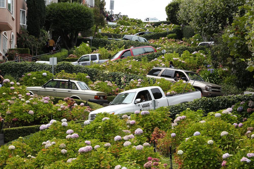 Jardim de Carros (Garden of Cars) ,  Mario Lalau