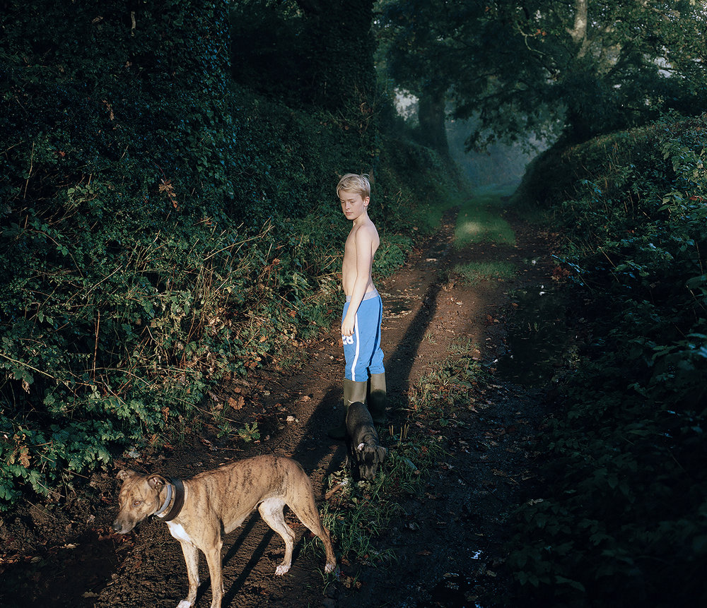 Finn and the Dogs on the Path ,  Beccy Strong