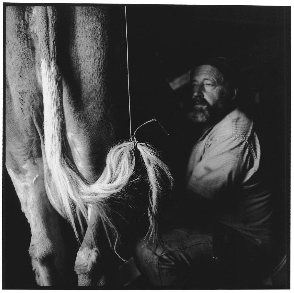 Handmelken, Poganggenalp, Mürren, 1996