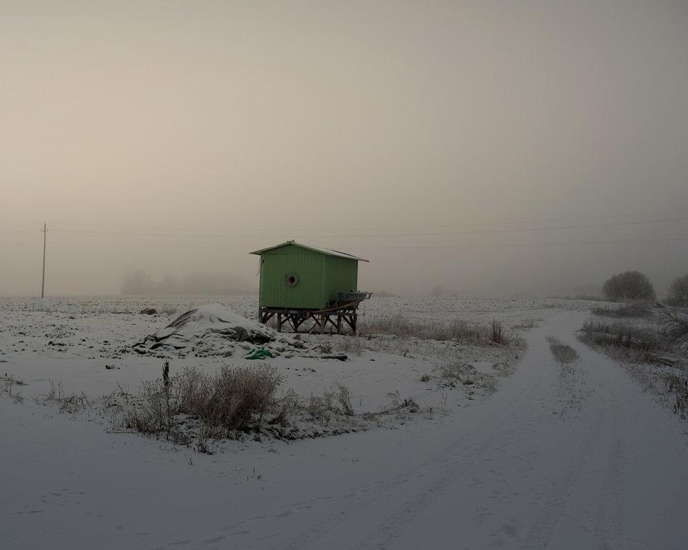 Strawberry Fields, Janne Savon