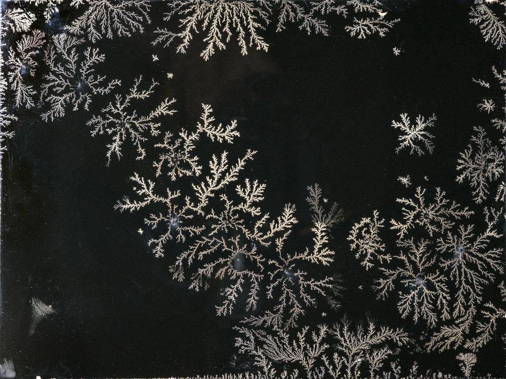 Snowflakes2015webJPG.jpg