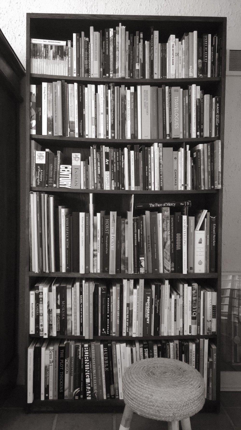 Adam Finkelston 's black-and-white bookshelf.