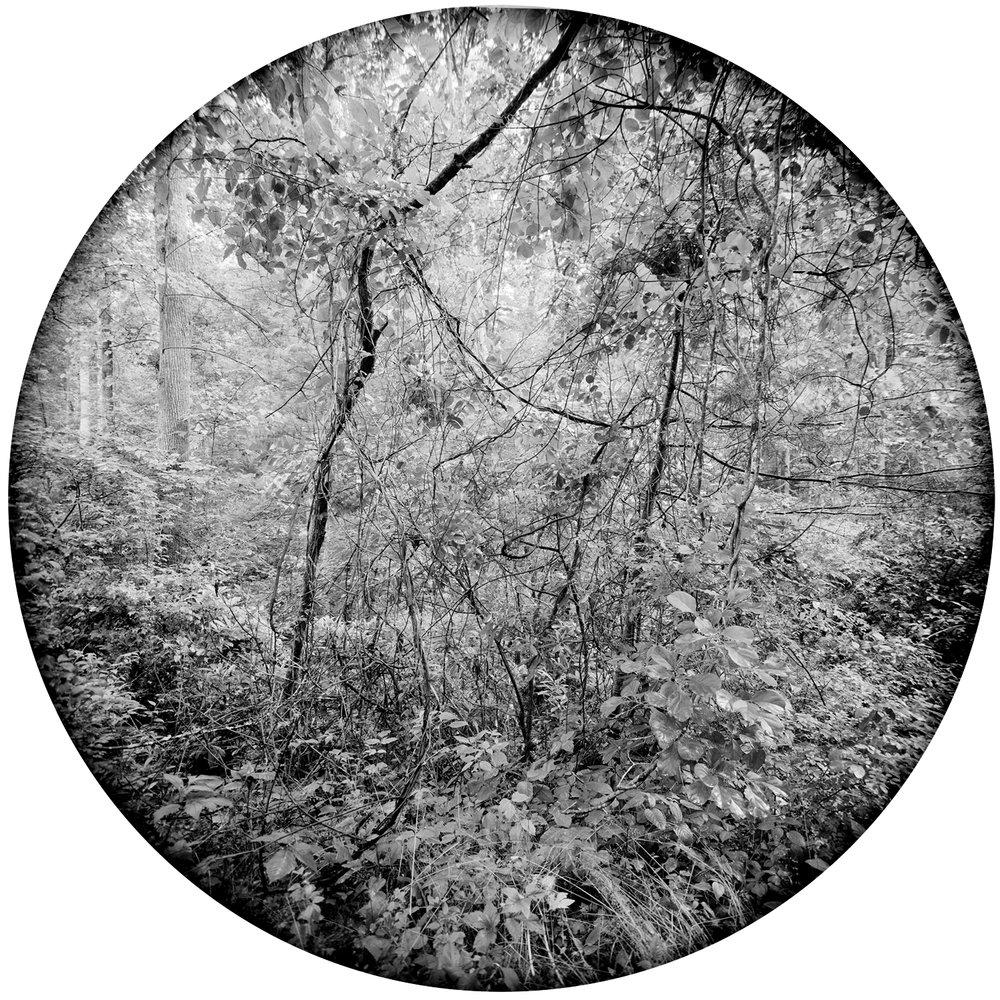 Terrasphere #2.jpg