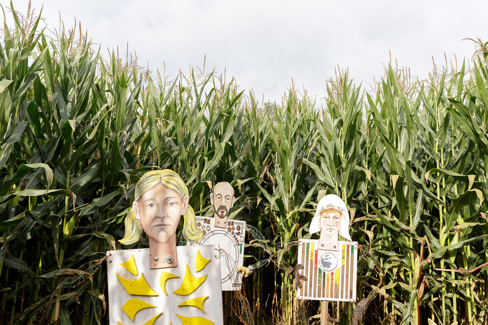 Corn Maze, Nicholas Gaffney