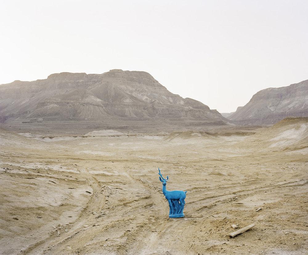 Untitled ,  Sivan Abergel