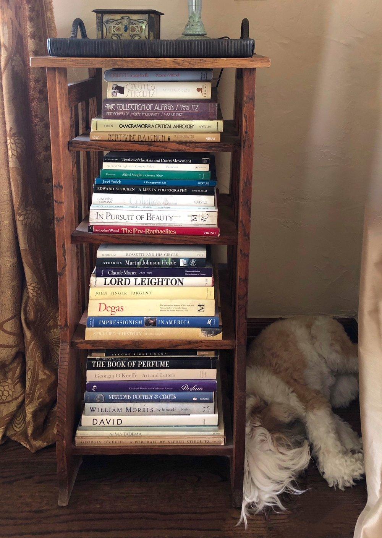 Sleeping watch dog by  Wendi Schenider 's photobook shelf.