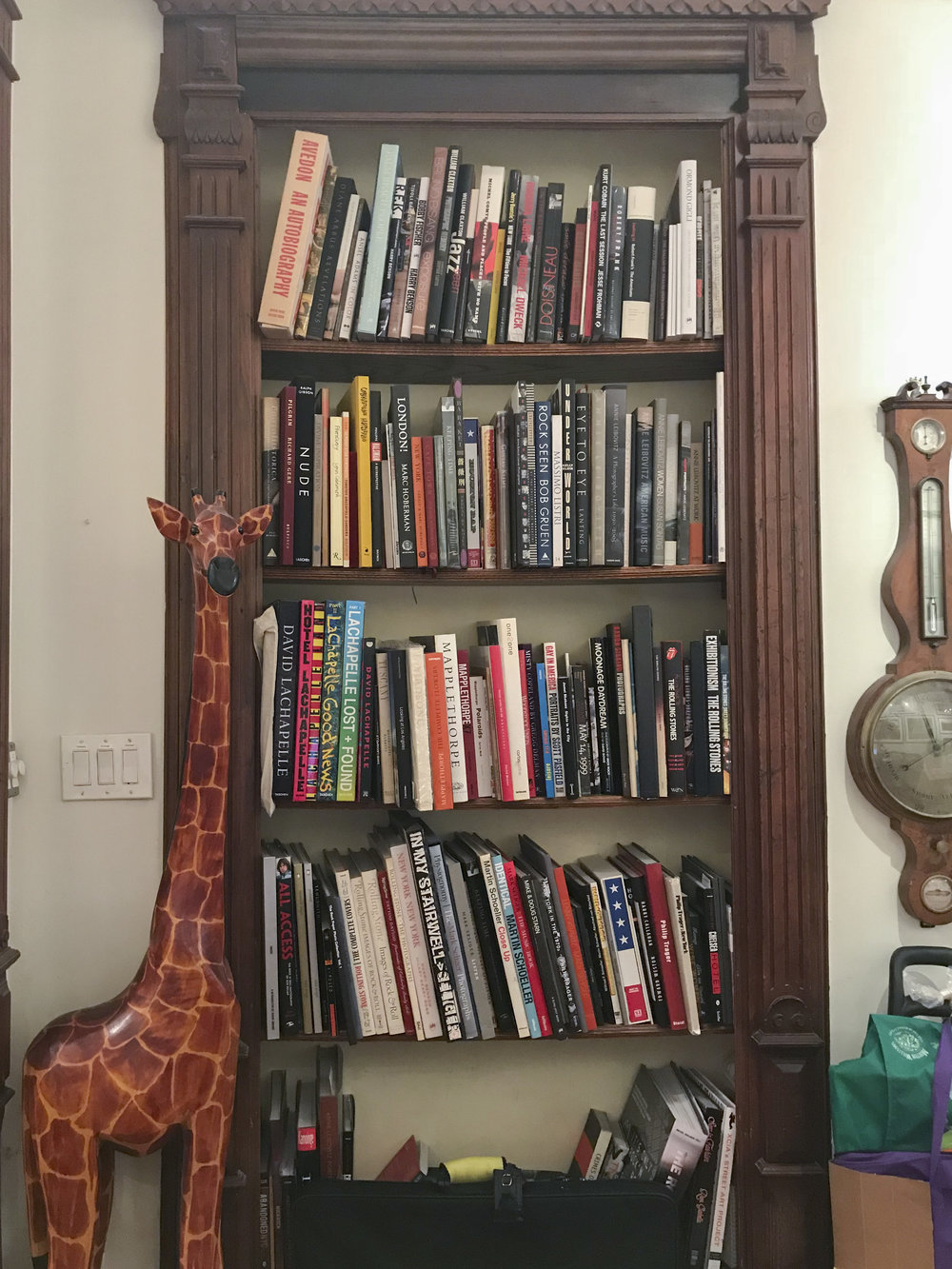 Giraffe guardian of  Loni Efron 's photobook library.