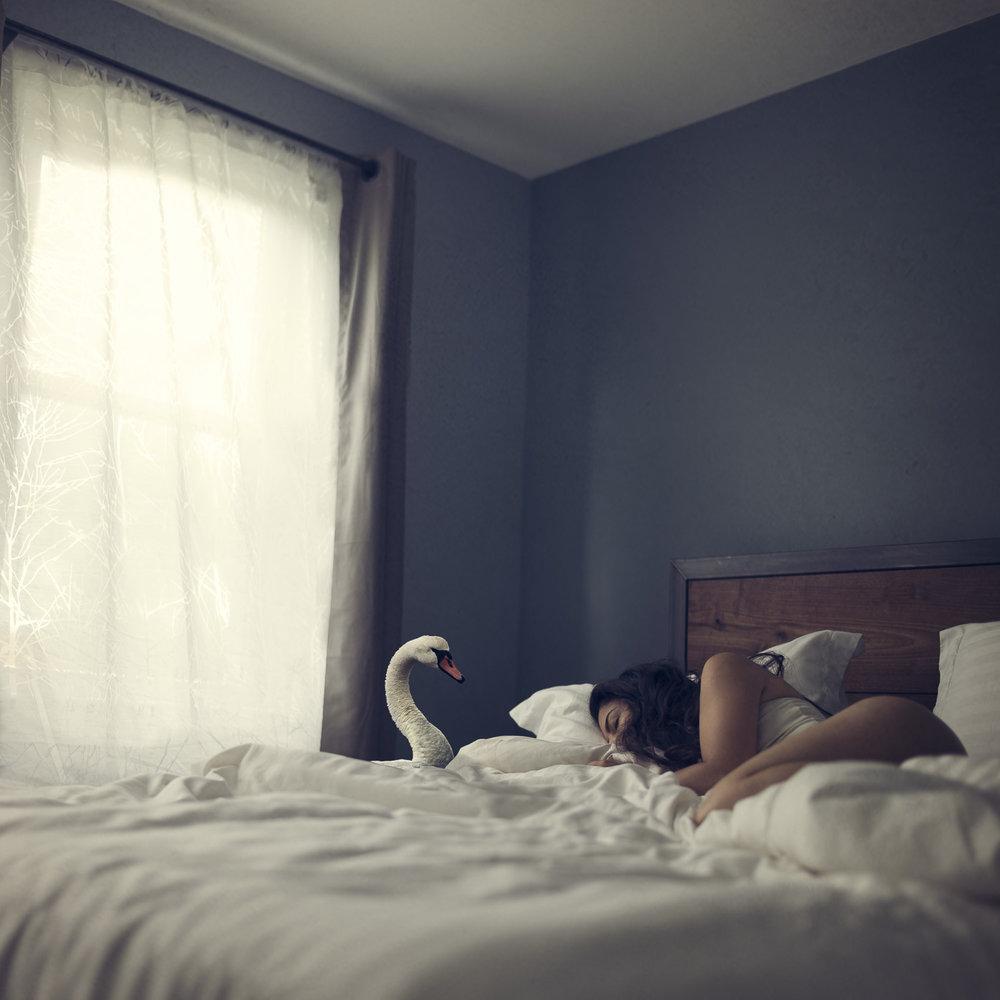 Wake-Up Call ,  Marisa S. White