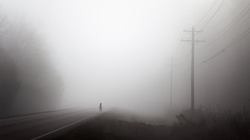 Power Lines ,  Dominic Lippillo