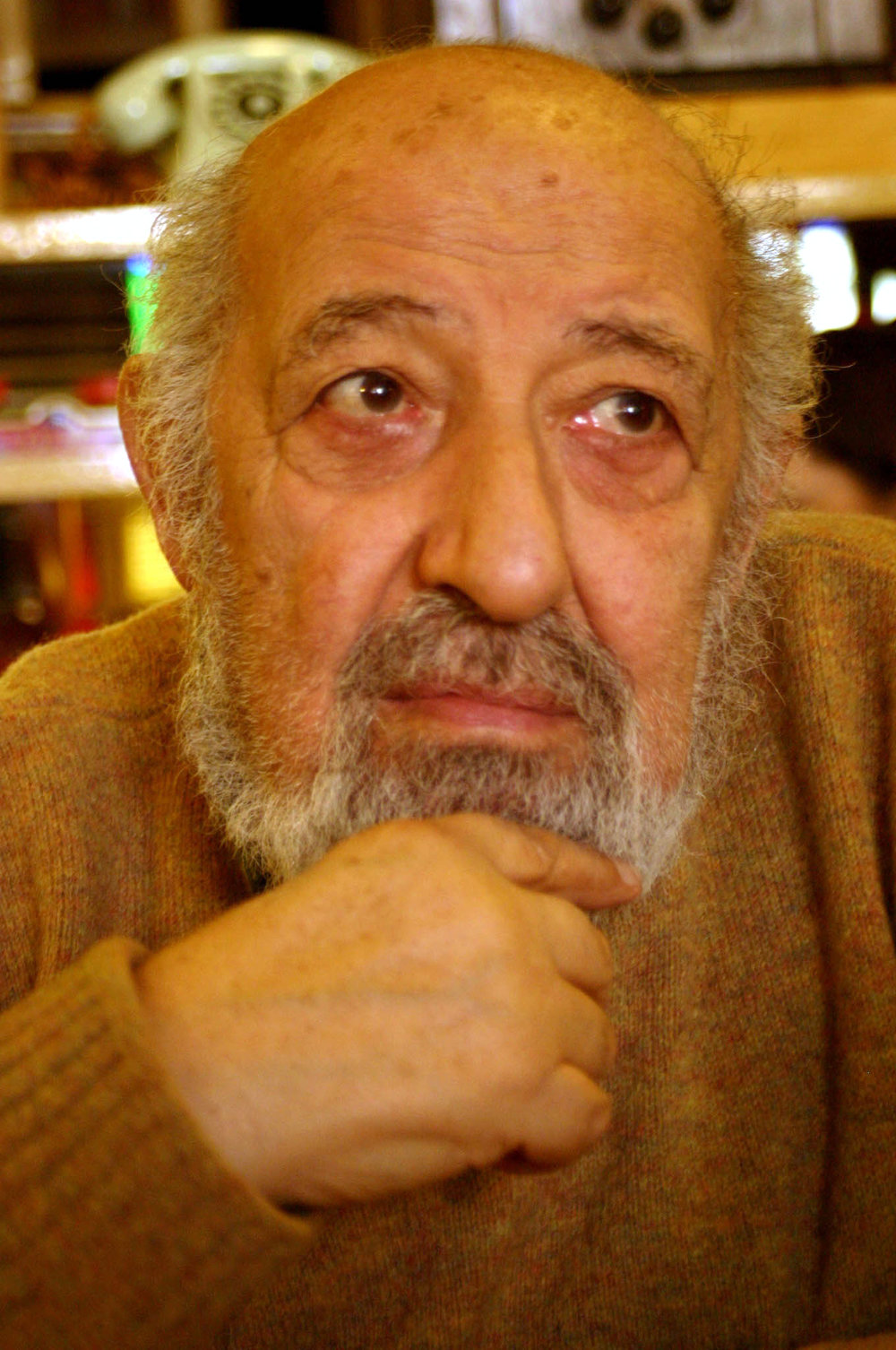 Ara Güler by Frank Payne via  Wikimedia Commons