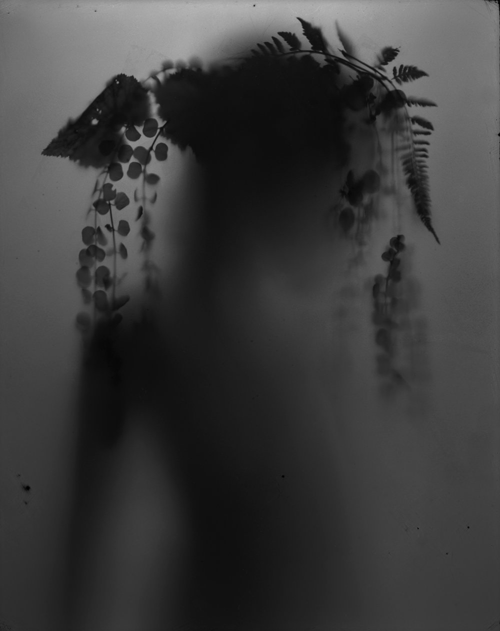 Untitled (Figure with fern & begonia #2) ,  Amanda Tinker