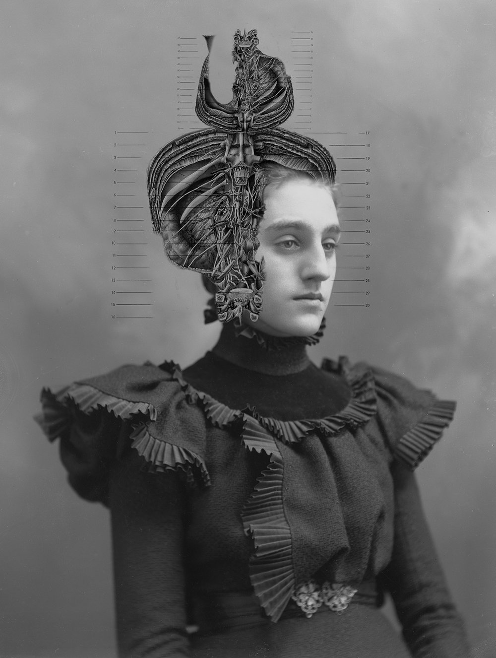 Her Hat Is Lovely  from the series  Dames of Anatomy ,  Laura J. Bennett