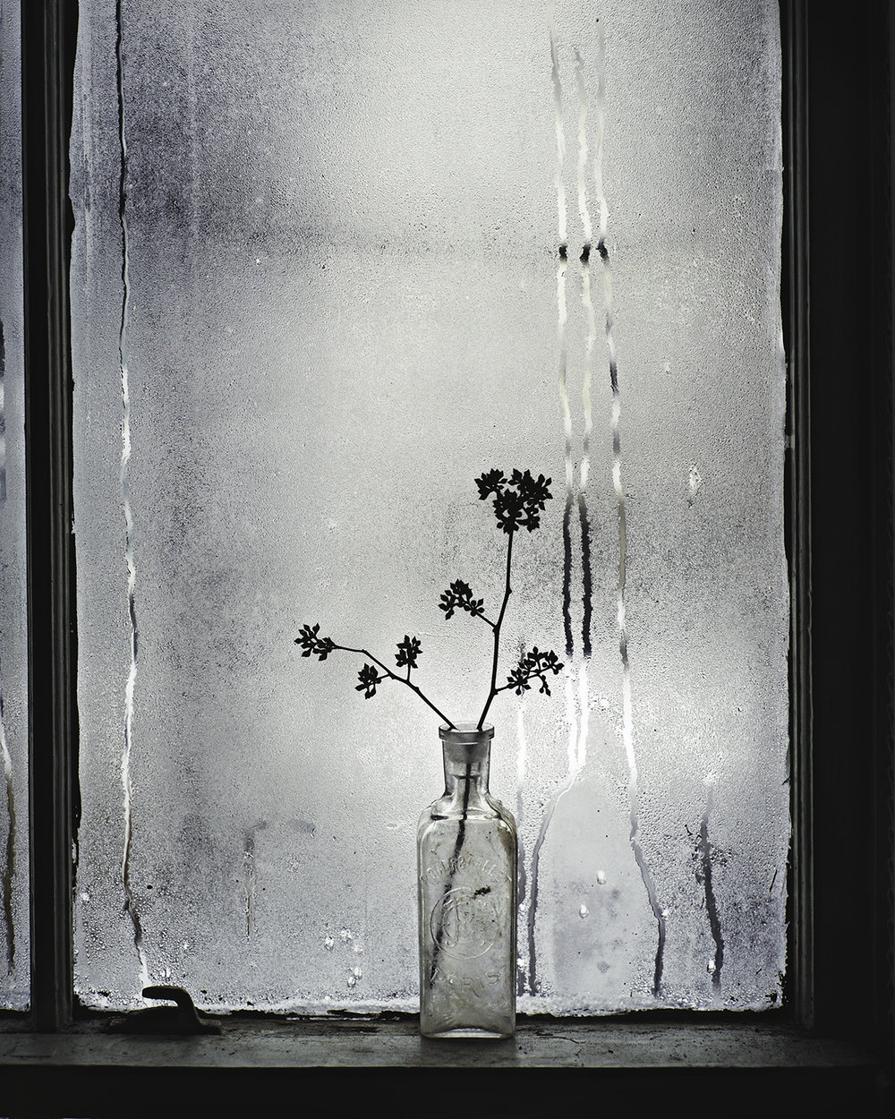 The Crying Window ,  Anne Closuit