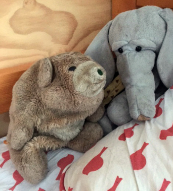 Ted and Elephant.jpg