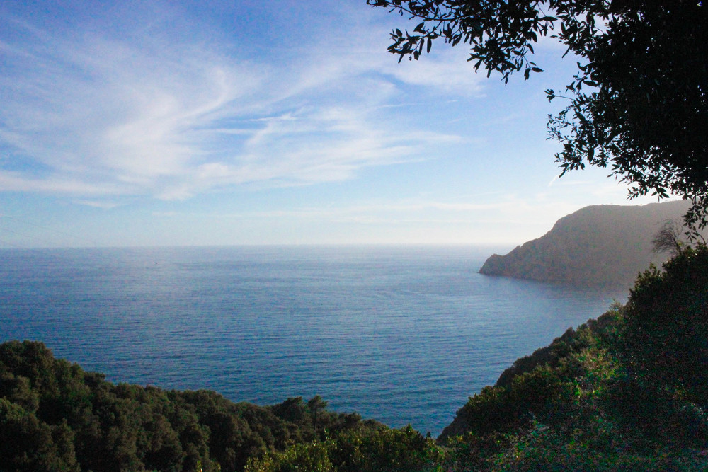 on the hike from Vernazza to Monterosso