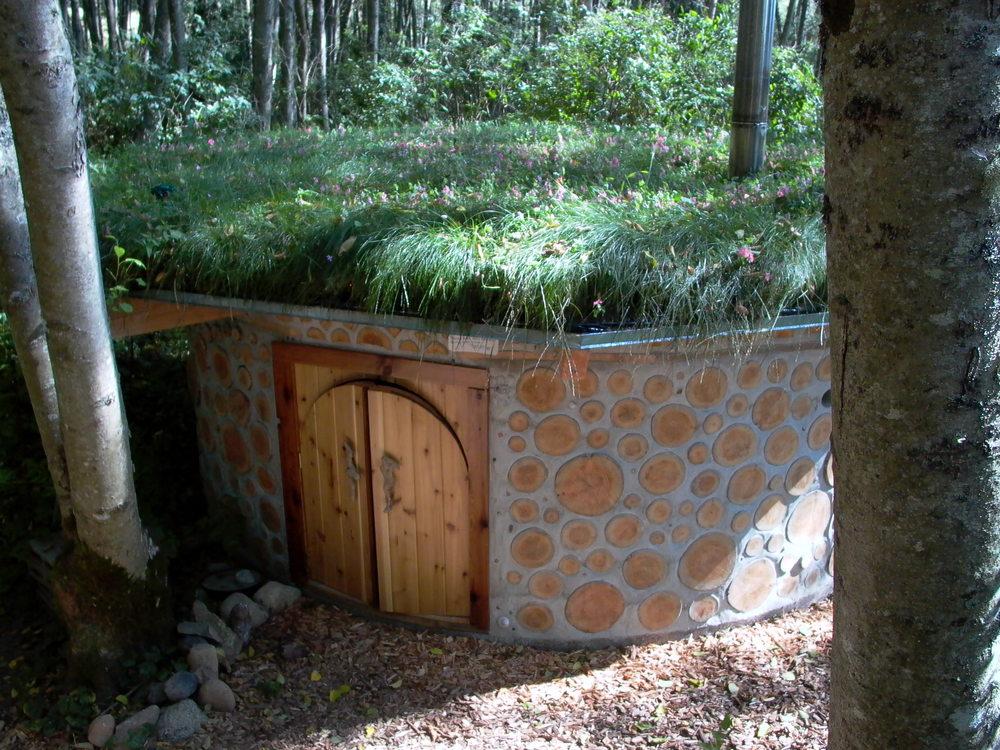 sauna lush.jpg
