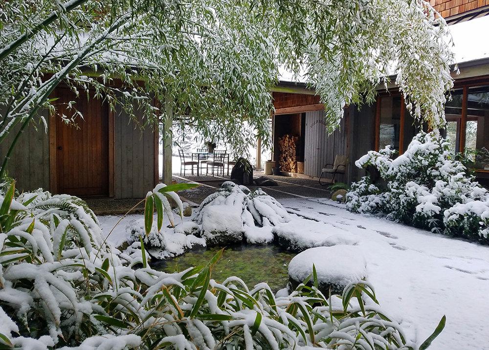 Winter Main & Studio Entrance.jpeg