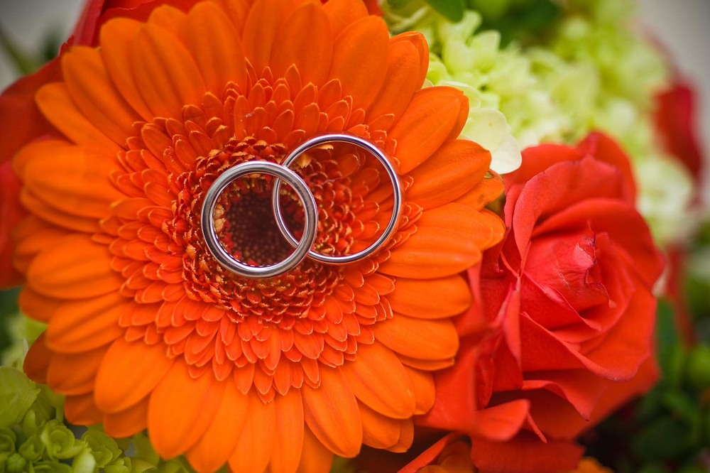Photography of Wedding Bands