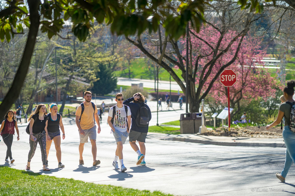 235383 Spring Campus - Students Walking to Class - Flowering Trees-1018.jpg