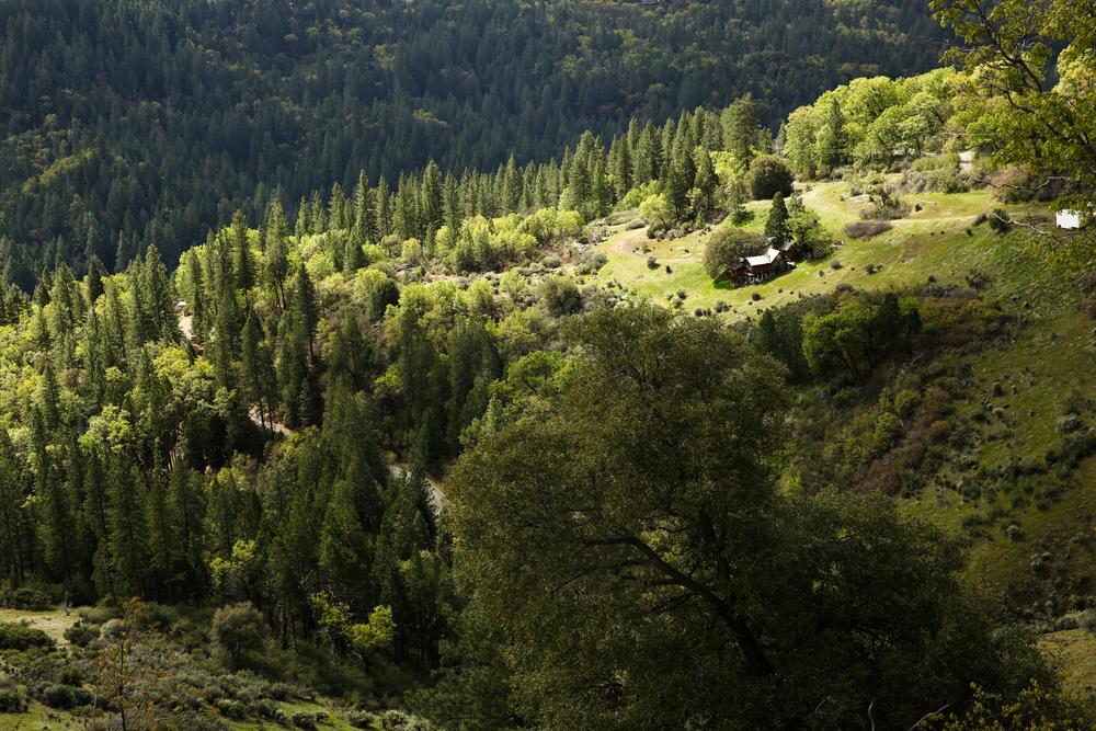 Pollock Pines-8318.jpg
