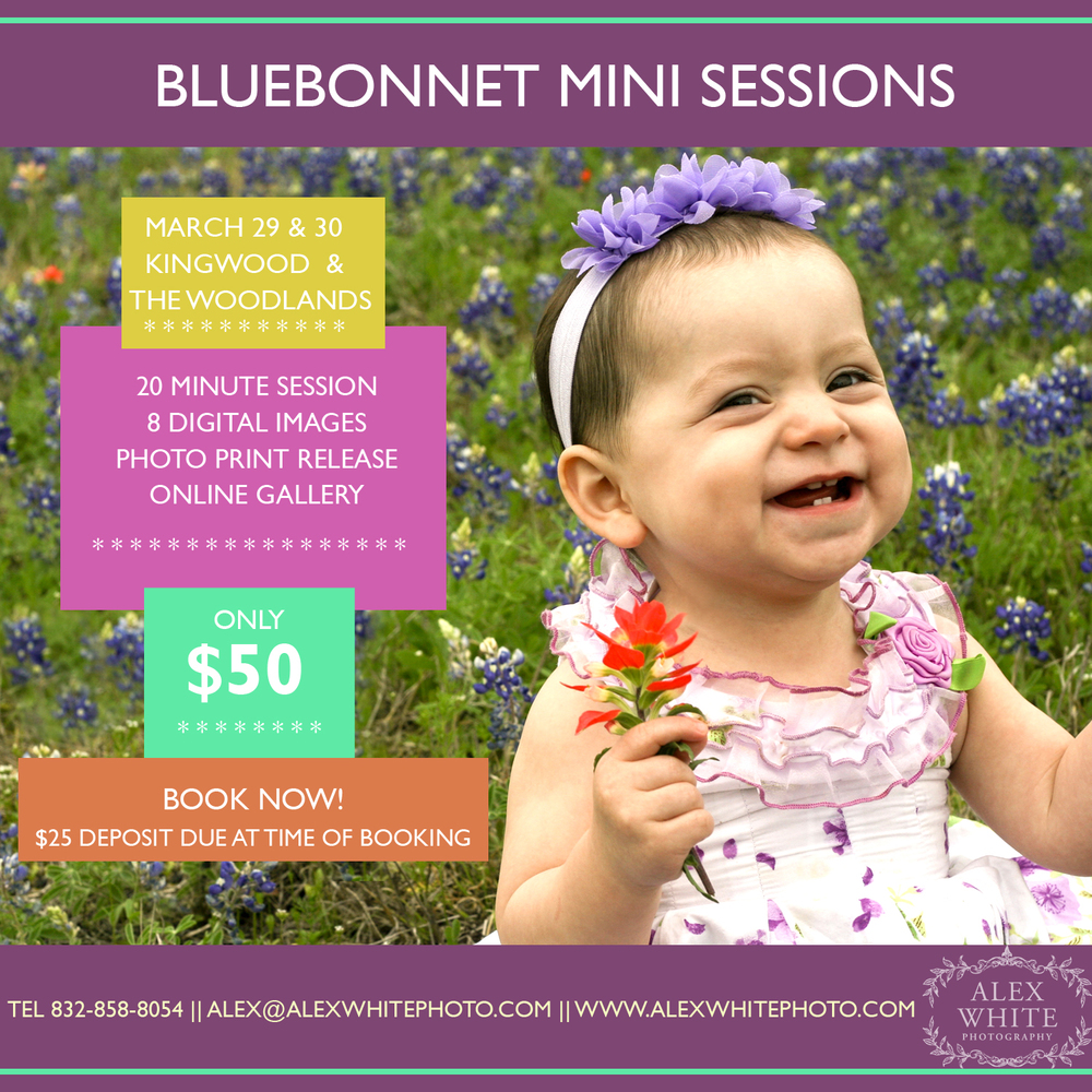 """""""Like"""" our page and """"Share"""" our add on  Facebook to receive a $5 discount on your mini session."""