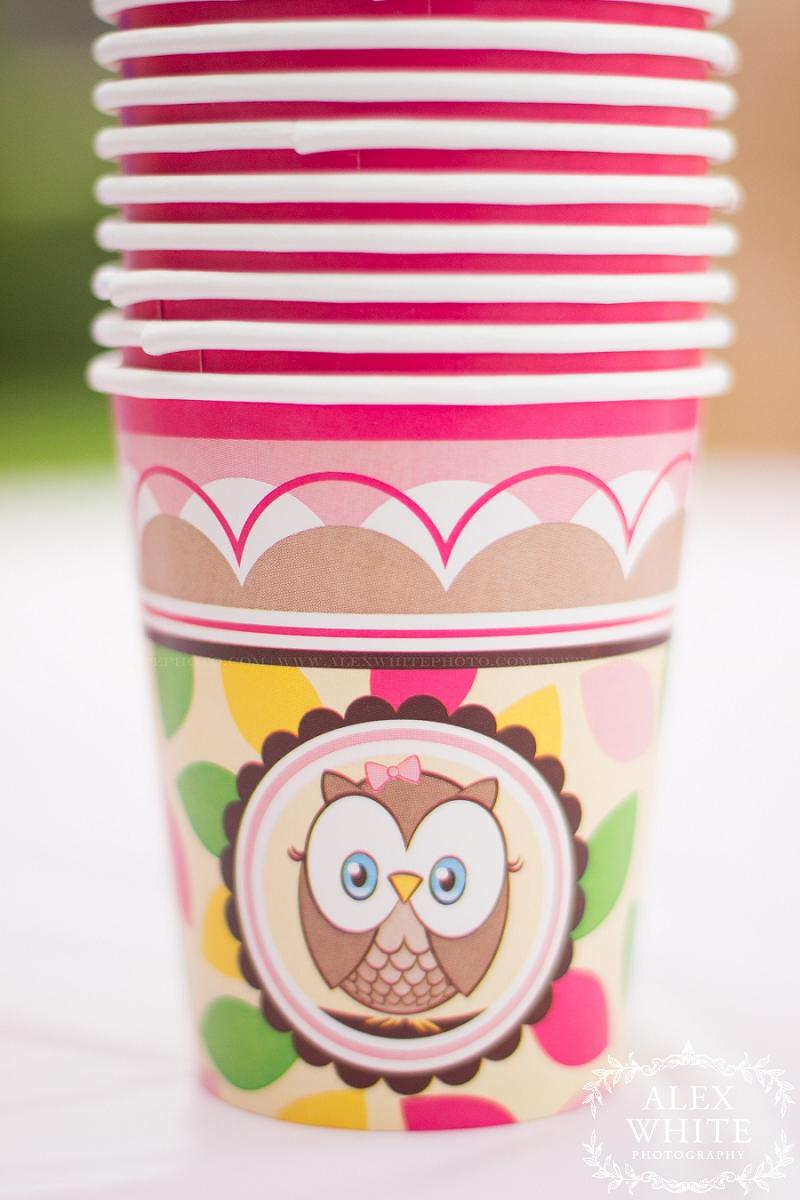 owl themed birthday party ideas photography alexwhitephoto