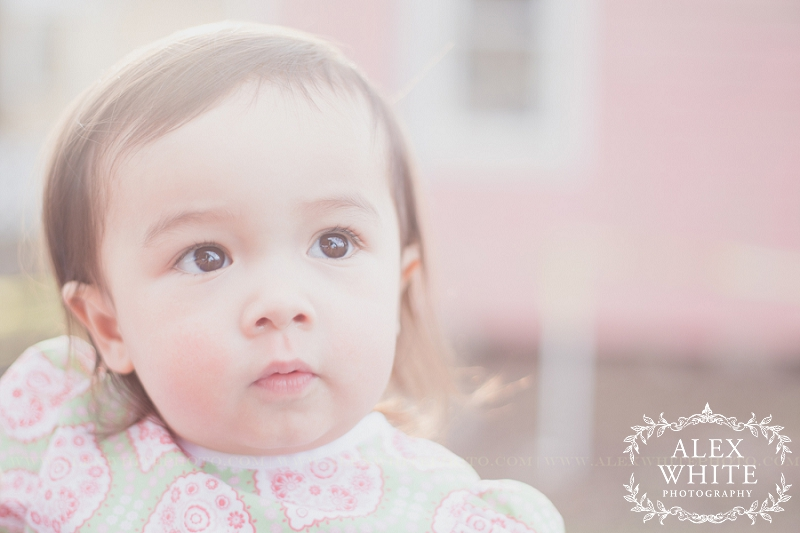 2+Year+old+shoot+Old+Town+Spring+Child+Photographer+Grow+with+Me+alexwhitephoto.jpg