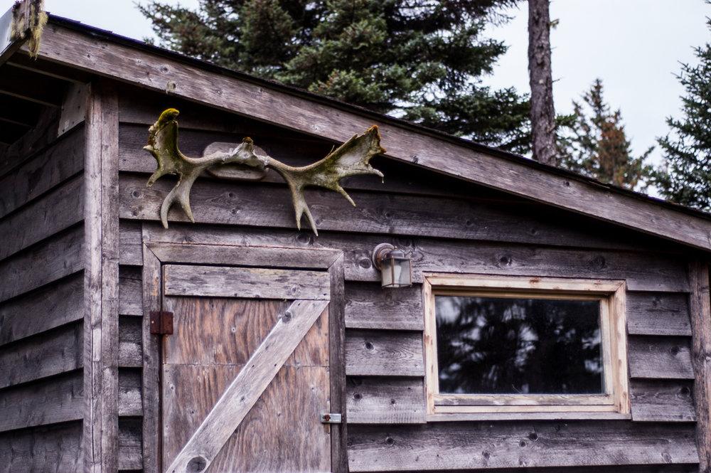 Ginew-sauna-heritagecoat