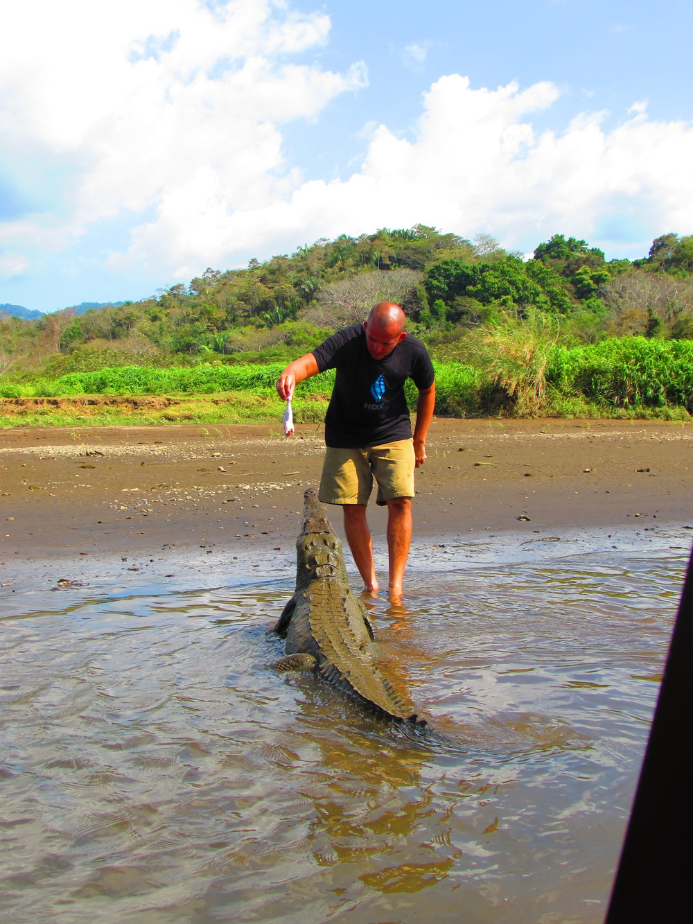 Our new friend Jimmy feeding a Croc!
