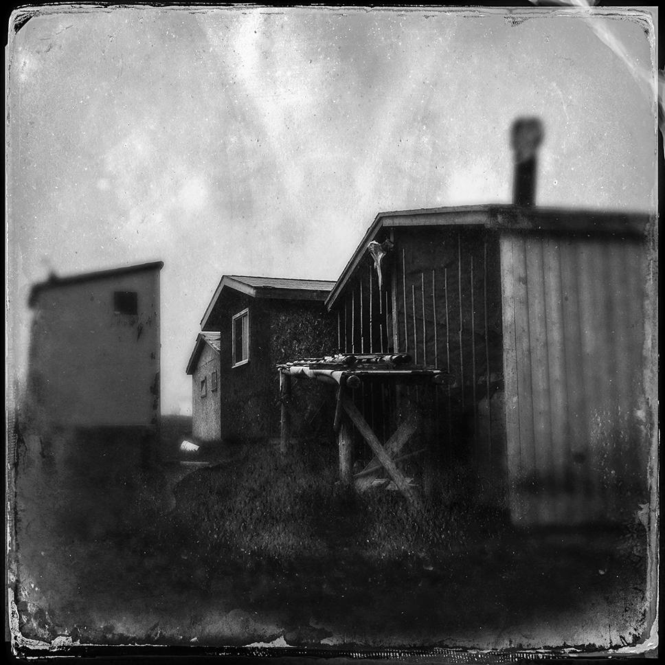 Bullock_Newfoundland-2.jpg