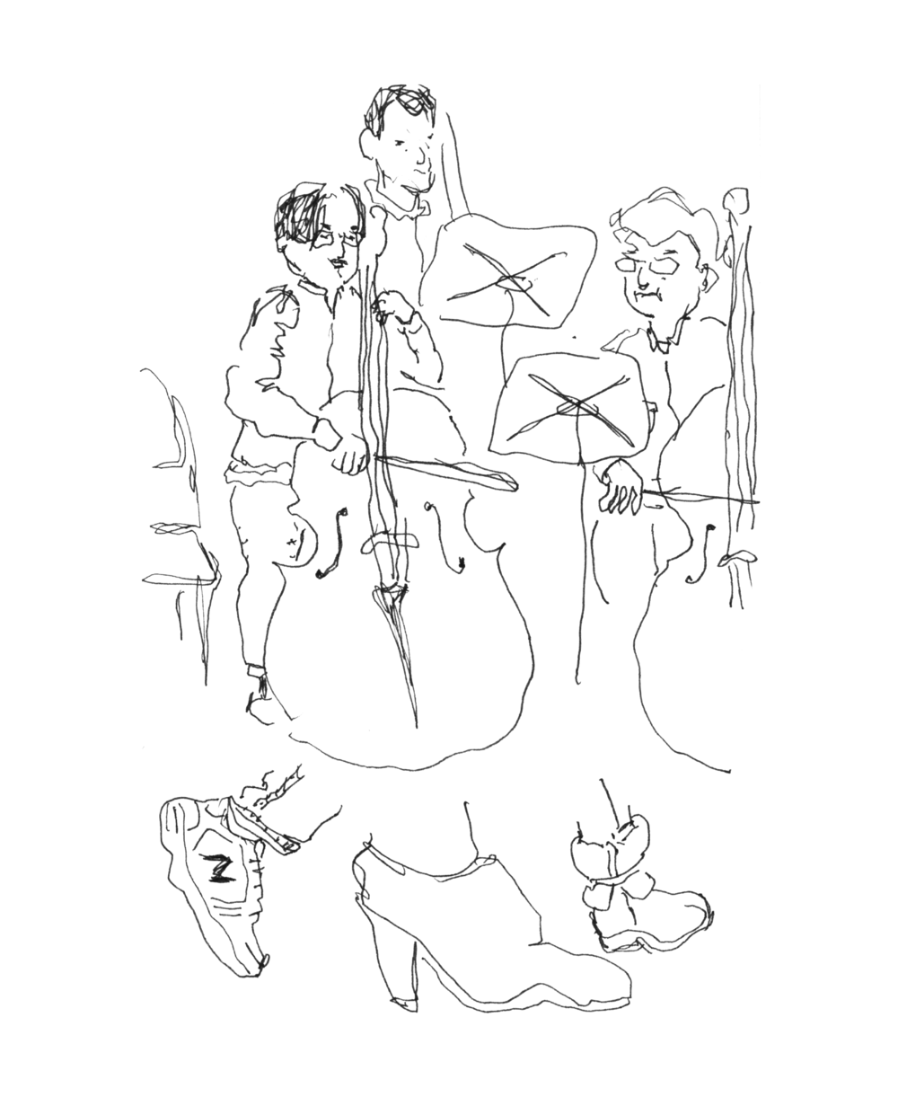 orch2.png