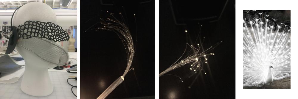 Fiber Optic Exp.jpg